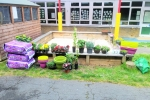 Some of the planting that took place